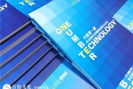 科技企业宣传册设计 看科技企业宣传册内容的设计、思路