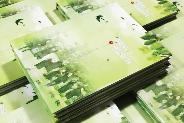 泡桐树小学2017届5班毕业纪念册|同学录制作|相册