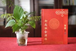 宴会宴席菜单设计制作 有中国特色的酒楼菜谱设计制作案例