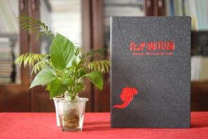 专业菜谱制作公司所做的有文化内涵的菜谱,很有川菜地方特色的菜谱