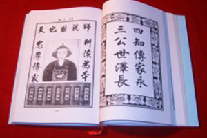 杨氏家谱实例鉴赏-成都族谱宗谱制作
