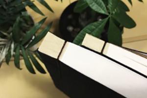 空白可填写家谱印刷装订-族谱设计制作