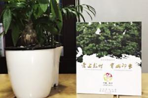 彭州宝山-城市形象宣传片光盘包装盒设计制作