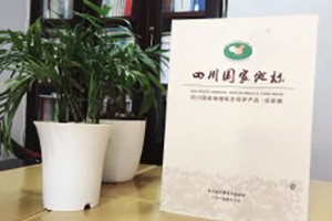 四川国家地标-成都地方志书籍县志印刷制作