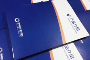 公司宣传画册设计制作-成都西南产交所