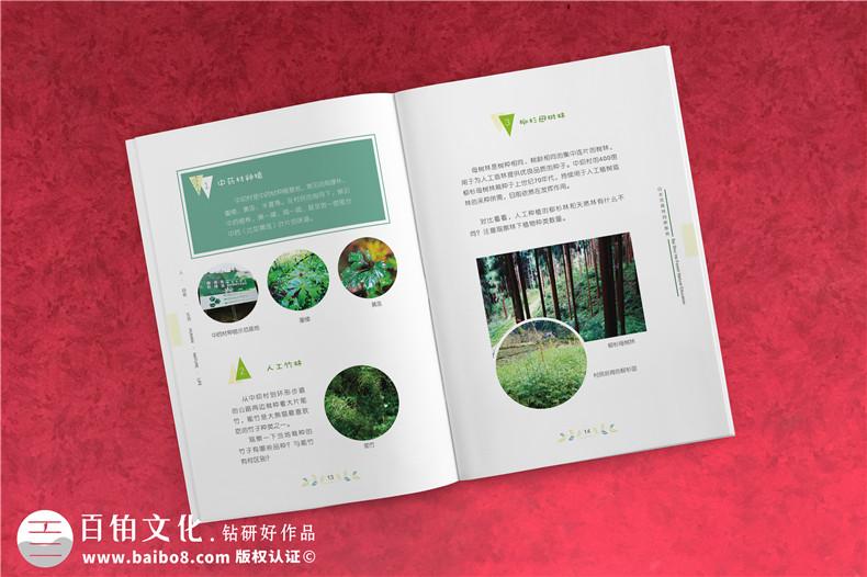 民宿宣传册,一张提高民宿订单率的营销名片