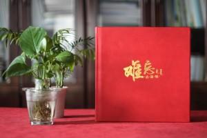 党委书记调任纪念画册-给单位领导干部的升迁离任工作纪实留念相册