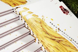 聚会纪念册之个性同学录纪念册设计