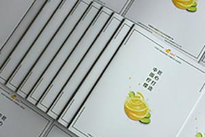 水果宣传册设计 水果宣传单制作技巧