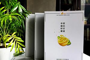 水果店铺宣传册设计的必备技巧 让水果说话的制作方法