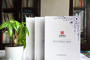 企业产品画册设计技巧 具有宣传价值的产品手册设计思路与方法
