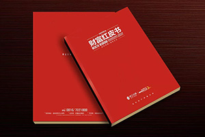 房地产宣传册设计 制作精美的房产画册宣传企业形象